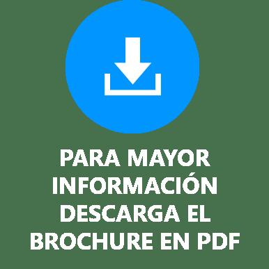 CURSO DE PREPARACIÓN PARA LA CERTIFICACIÓN PMP® BROCHURE PDF